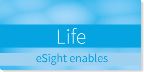 esight enables life