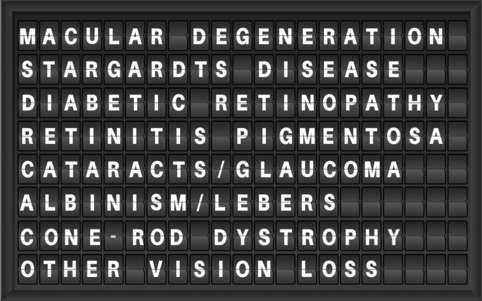 Low Vision Specialists Conditions